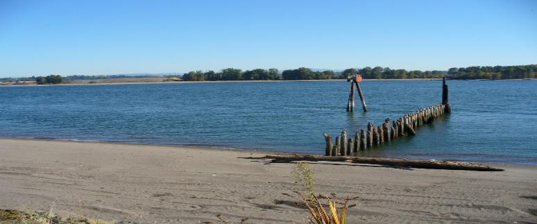 Official Reeder Beach Resort Site Sauvie Island Oregon